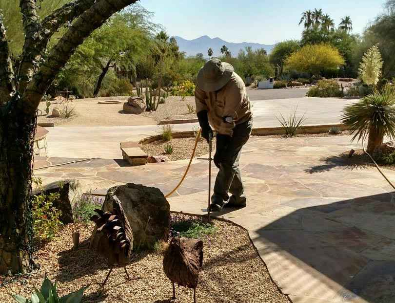 Top quality Weed Control in Paradise Valley, AZ