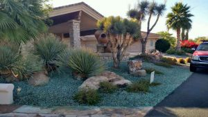 Scottsdale McDowell Mountain Ranch Weed Control - After