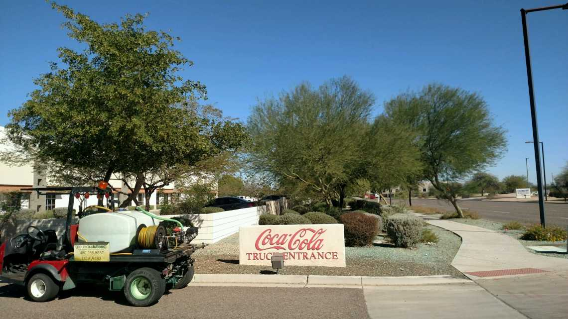 glendale weed control cocacola