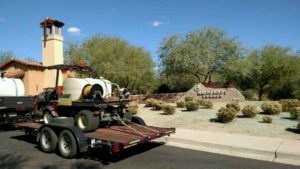 Scottsdale Commercial Weed Control